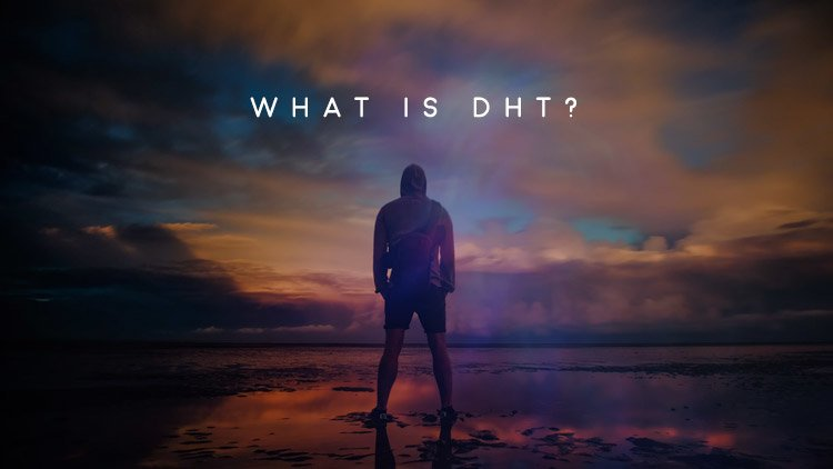 Men's Health Blog: dht
