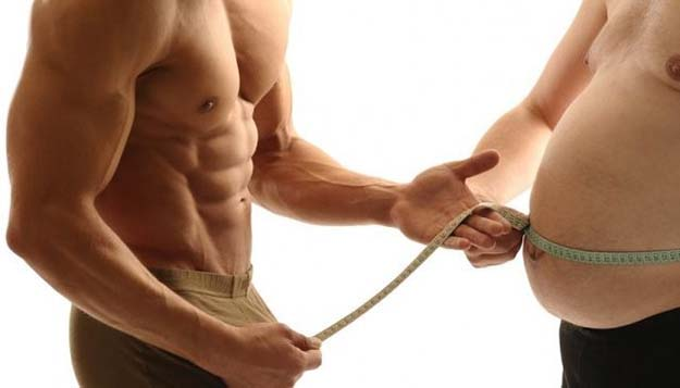 fat loss is one of the effects of testosterone