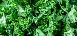 kale superfood